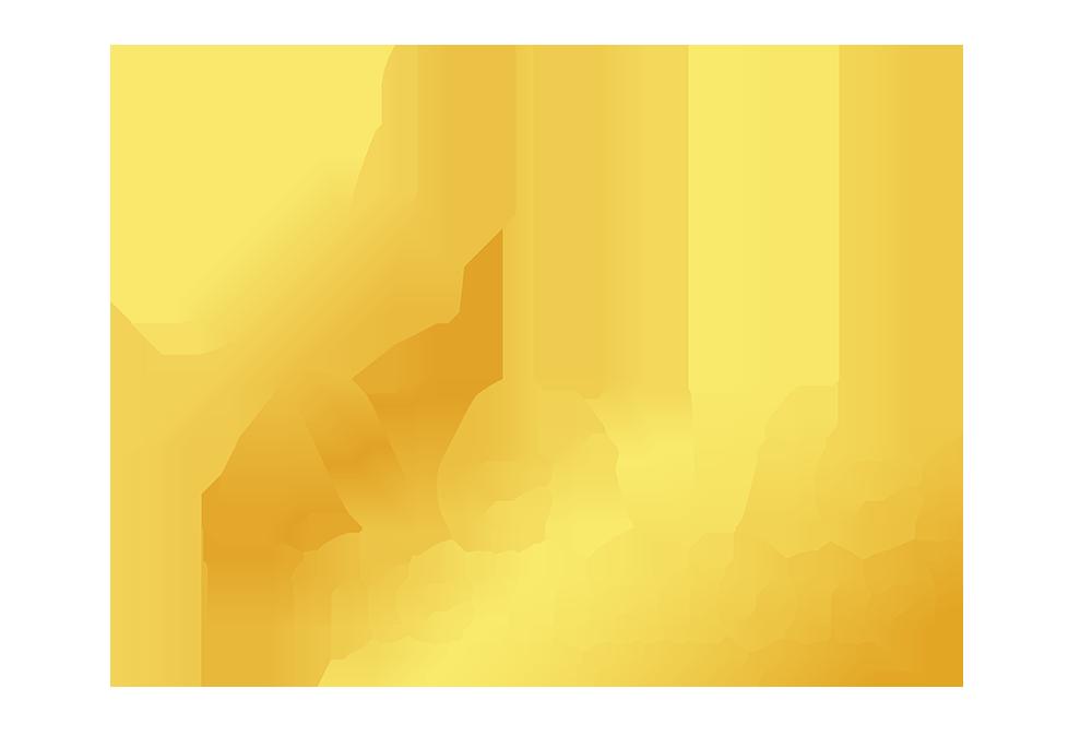 NetViet- Network